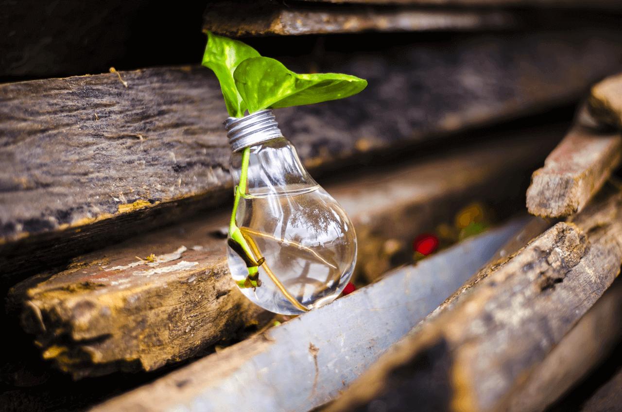 LED são mais sustentáveis